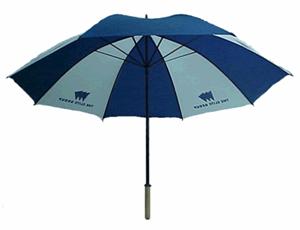 nuclear-umbrella
