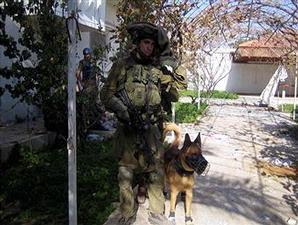 aniing-israel-israel-anjing